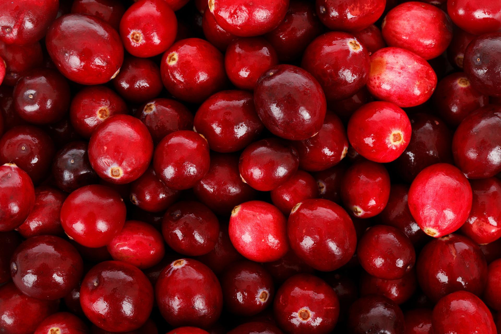 Cranberry Blasenentzuendung blasenentzuendungheilen cranberries hausmittel