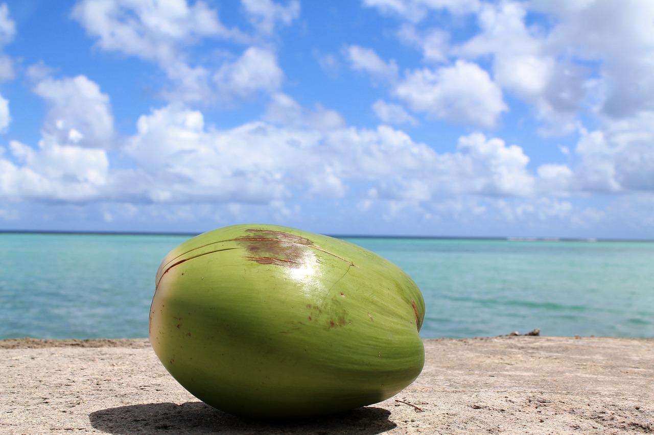blasenentzündung blasenentzuendung blasenentzündungen schutz vor blasenentzuendungen kokoswasser tropen
