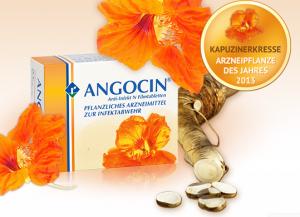 blasenentzuendungheilen angocin meerrettich senföl senföle senfoele kapuzinerkresse