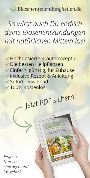 blasenentzündung heilen kostenloses ebook